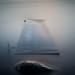 Flooded by Mikko Manner