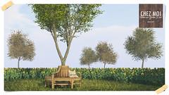 Tree Bench Magnolia CHEZ MOI