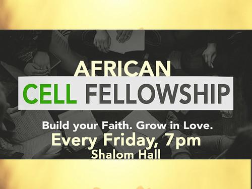 african cell fellowship