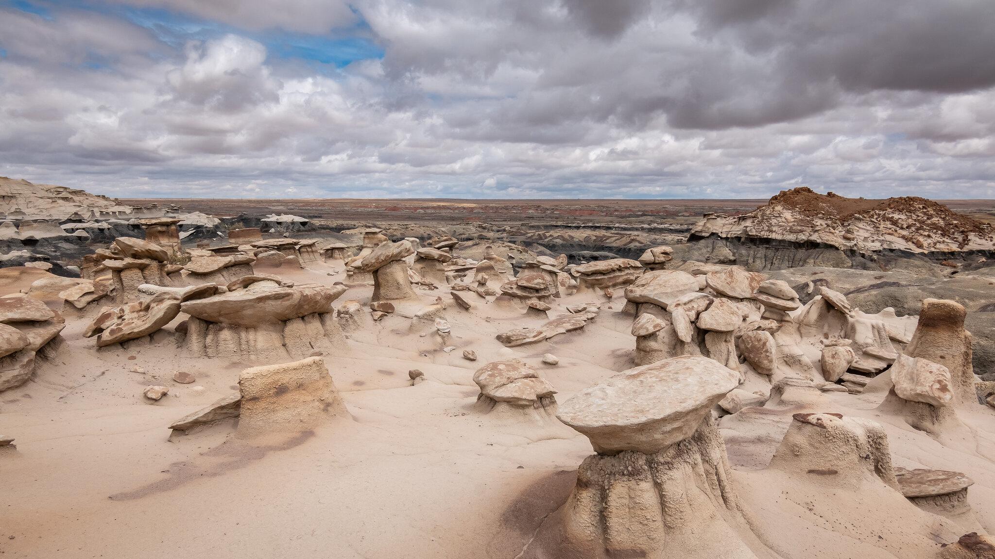 Bisti Badlands- Nouveau-Mexique - [USA]