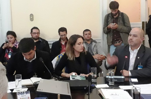 ANEF en Comisión de Trabajo por Estatuto Laboral para Jóvenes (14-05-2018)