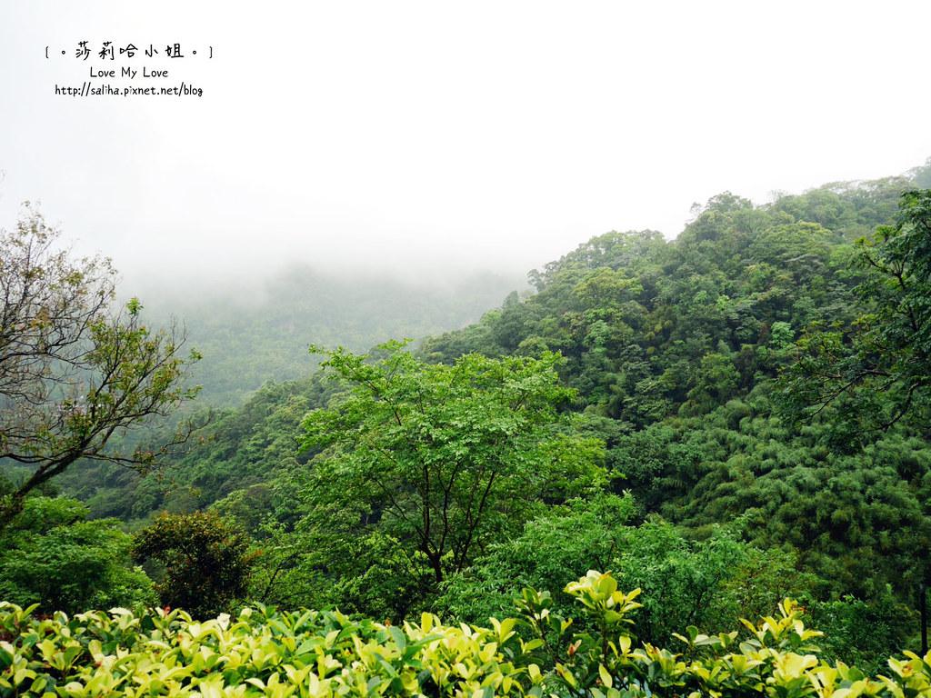 台北貓空景觀森林戶外餐廳推薦邀月茶坊 (5)