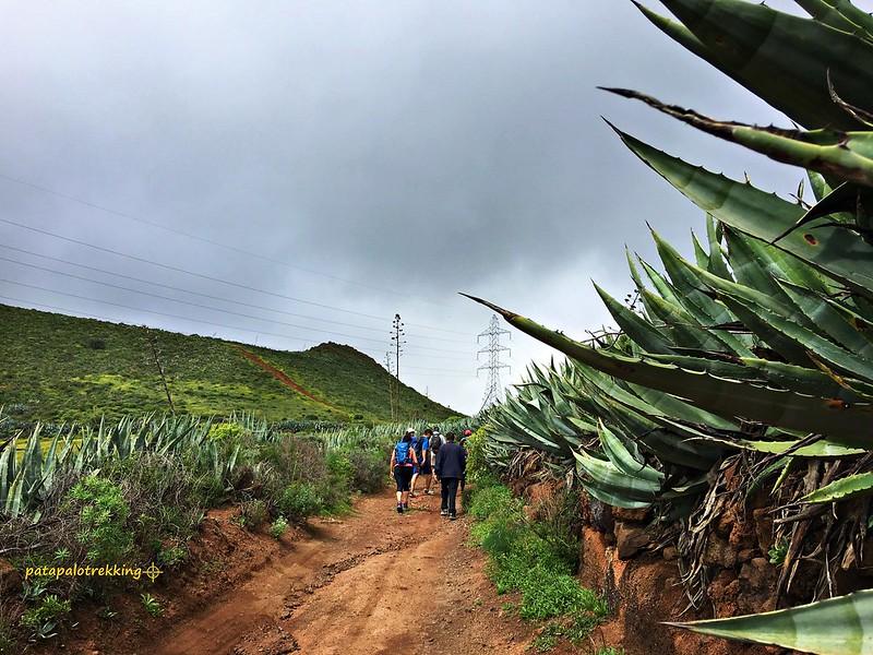 18 Bifurcación hacia la Montaña Caldereta o Santa Águeda