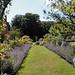 Walled Garden of Scottish Castle