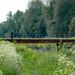 Bridge Over the River Roding, Redbridge