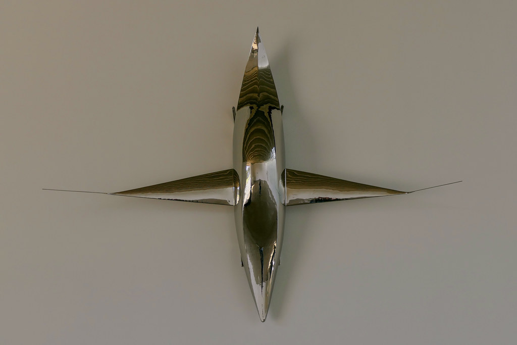 A Plane, A Boat, A Car, A Sled | Artist: Not Vital Title: A