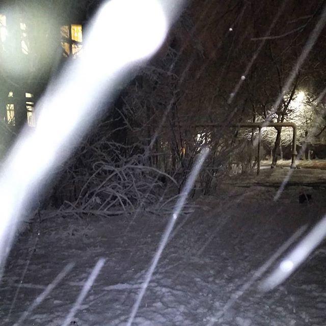 Вышел с собачкой на вечернюю прогулку, а тут такое: снег со всех сторон. И под ногами уже порядочно навалило, и сверху всё ещё продолжает валить. Собак был не очень рад такому повороту событий.