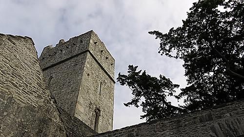 15IrMuckross Abbey at Killarney National Park in IrelandKillarneyNPMuckrossAbbey8200w