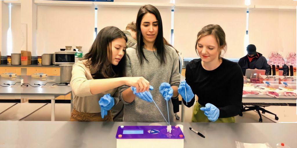 Une start-up vise à démocratiser la biologie synthétique