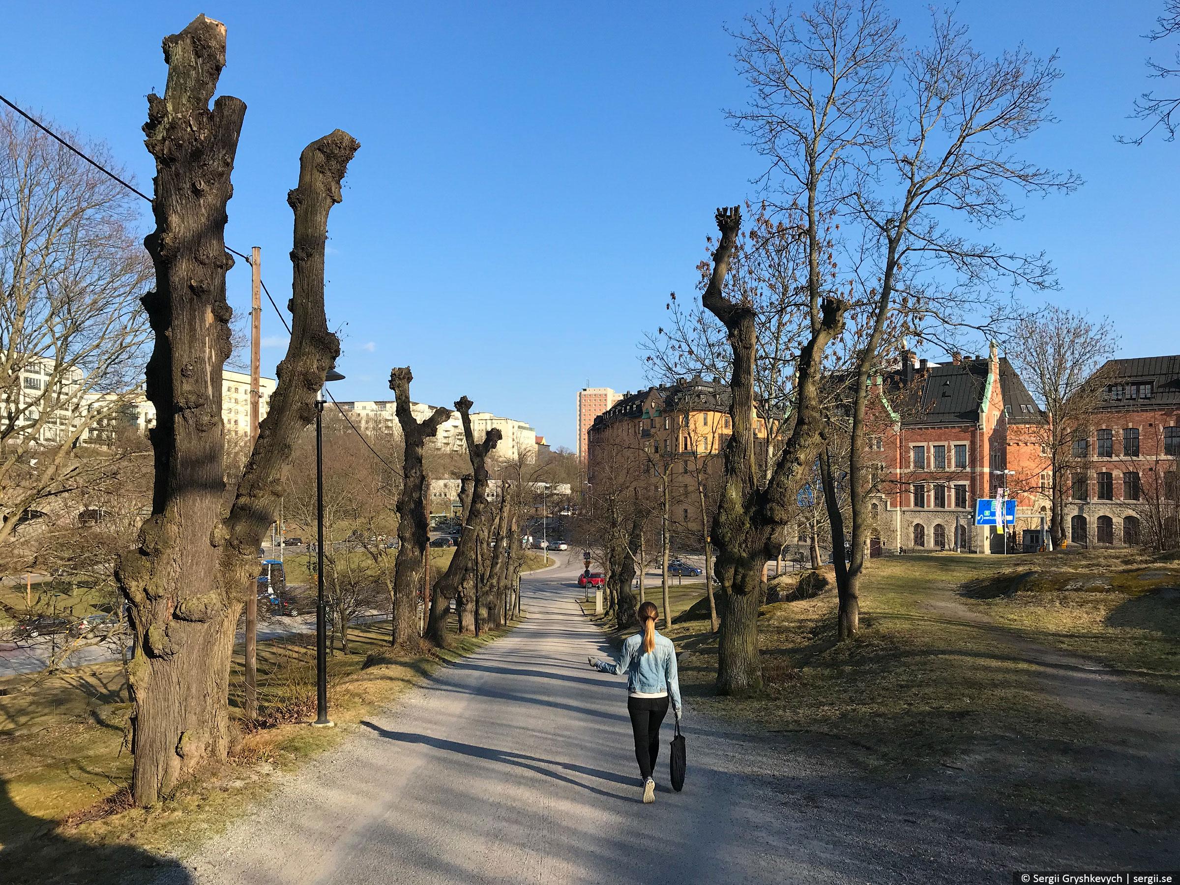 stockholm-sweden-solyanka-10-21