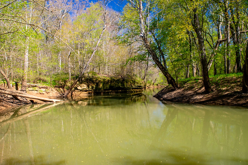 Hoosier National Forest - Lost River, Paw Paw Marsh - May 1, 2018