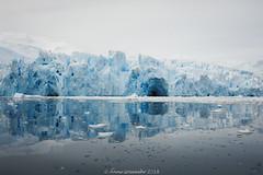 Cierva-Cove-Antarctica-6