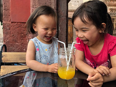 Bebidas para compartir