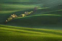 Morning in South Moravian Region