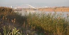 Delta del Llobregat per Teresa Grau Ros a Flickr