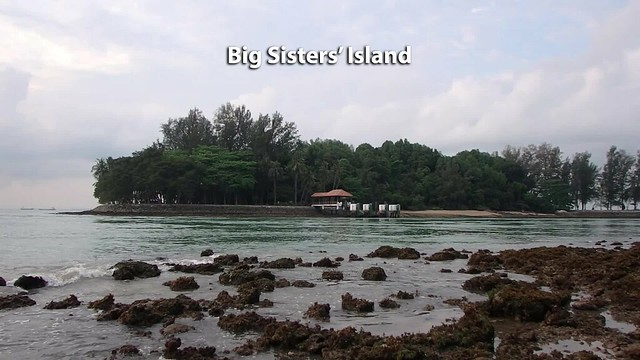 Natural coastal forest and rocky shore at Small Sisters' Island