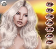 ::MD:: Olivia Catwa Eye Appliers