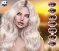 ::MD:: Olivia Catwa Eye Appliers
