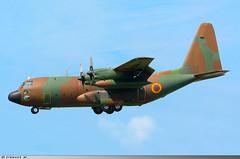 Lockheed C-130H Hercules Cameroon Air Force TJ-XCD