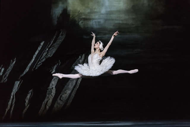 Marianela Nuñez as Odette in Swan Lake, The Royal Ballet © 2018 ROH. Photograph by Bill Cooper