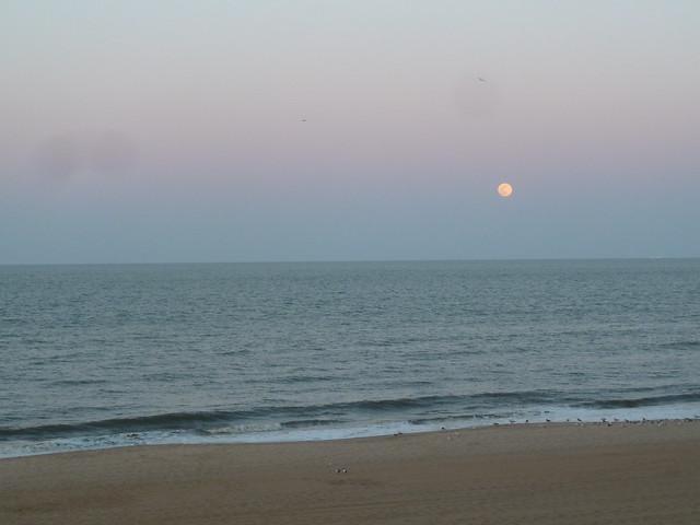 Moon, Gulls, Surf, Beach.