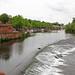 Chester River Dee Weir
