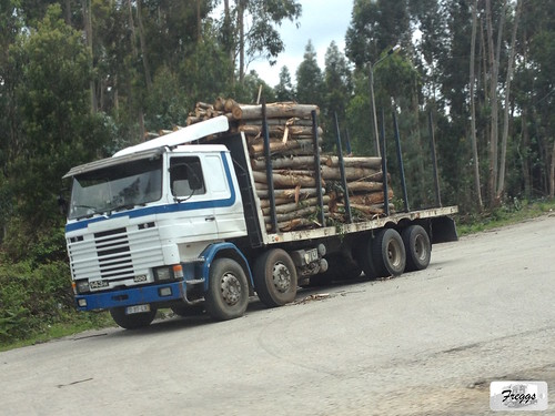 Scania 143H 400 Logging Rigid - Portugal