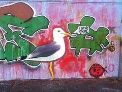 Seagull Street Art