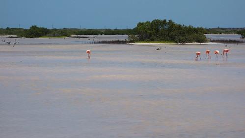 Punta Esmeralda de Yucatan, Mexico