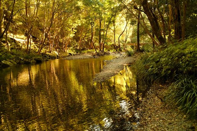 Promised Land NSW, Fujifilm X-H1, XF18-135mmF3.5-5.6R LM OIS WR