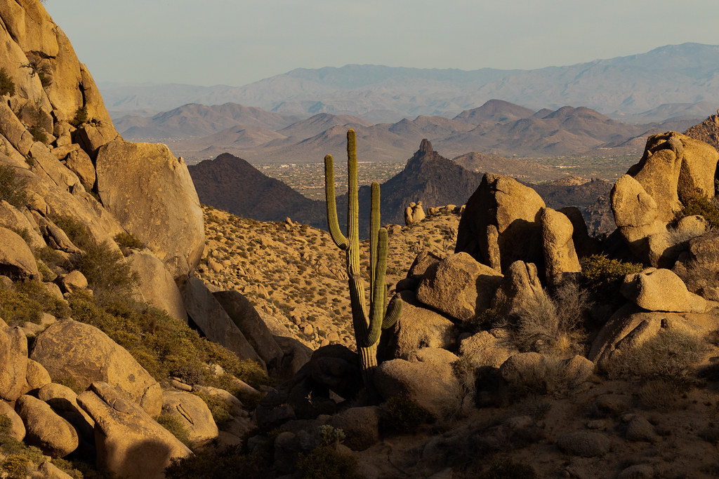A view of a saguaro, rock formations, and mountains in the distance from the Tom's Thumb Trail in the McDowell Sonoran Preserve in Scottsdale, Arizona