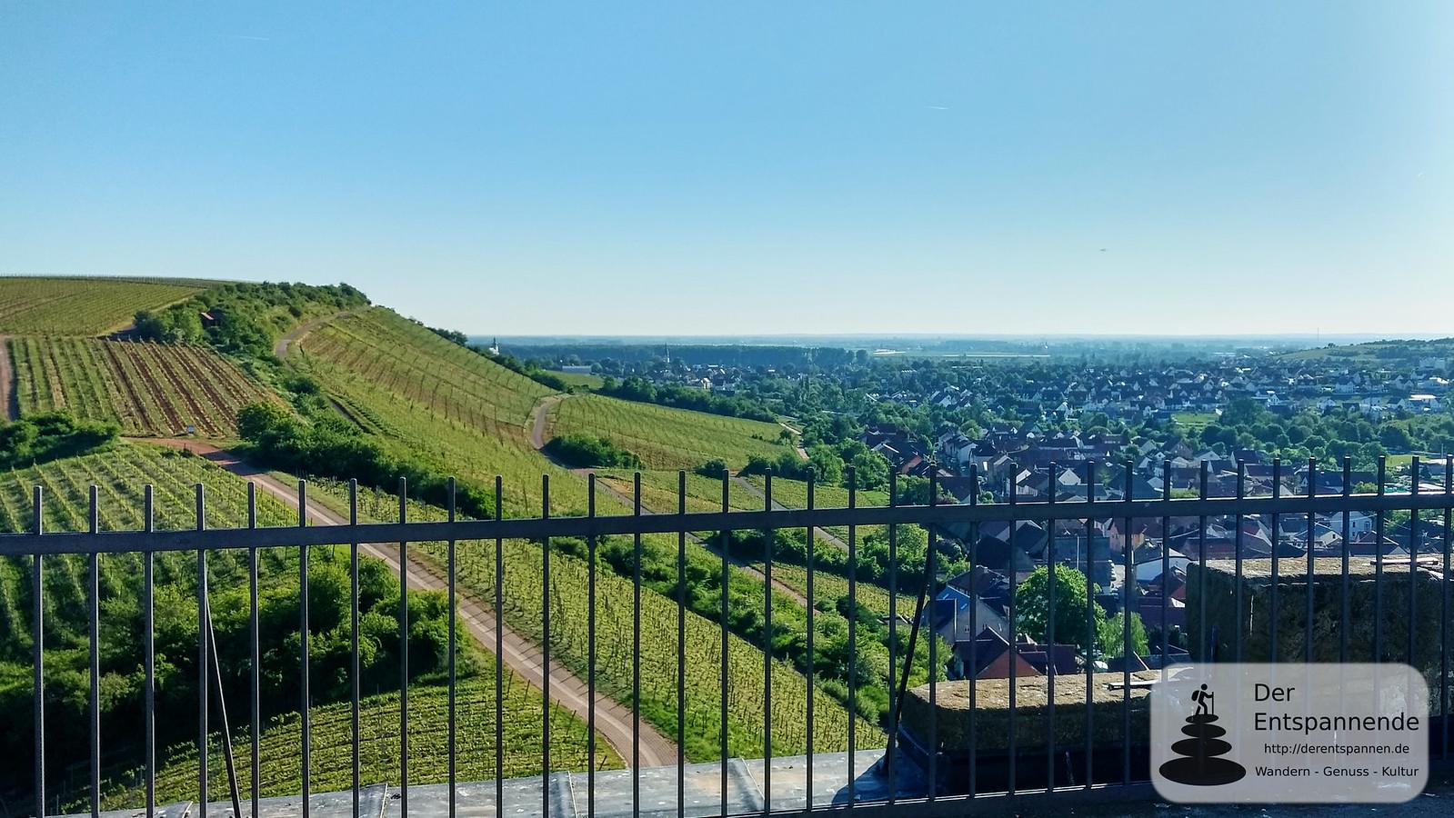 Blick von Burgruine Schwabsburg auf Nierstein und Rhein