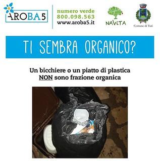 problemi organico (2)