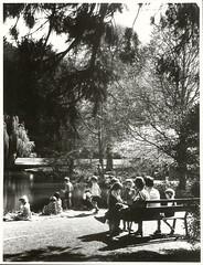 Schoolchildren enjoying the scenery at a school outing in the Ashburton Gardens, Canterbury Province