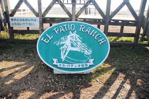 310 El patio Aso (1)