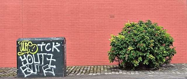 Sunshine on Leith, Nikon D750, AF Zoom-Nikkor 28-70mm f/3.5-4.5D