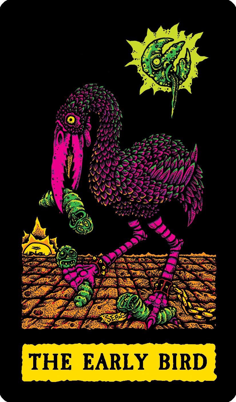 Sean Aaberg - THE EARLY BIRD