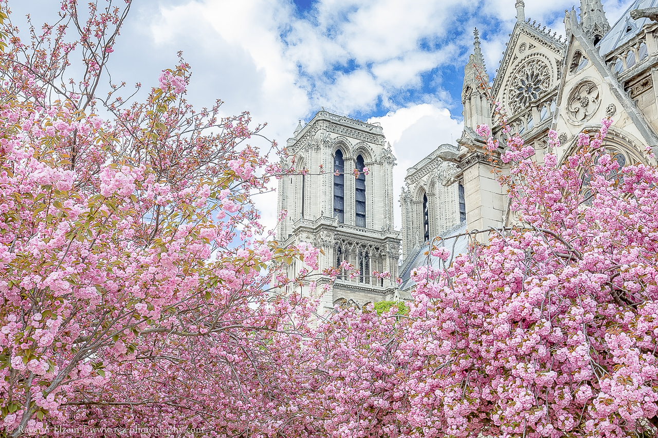 Pariisi_NotreDame
