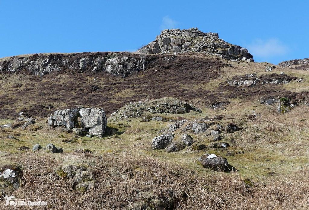 P1140675 - Burg Dunn, Isle of Mull