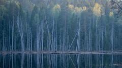 Hiidenportin kansallispuisto / Hiidenportti National Park