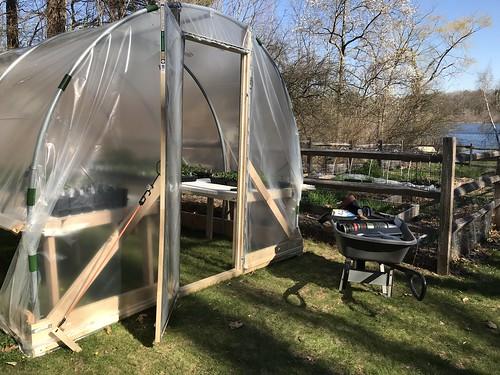 greenhouse IMG_2264