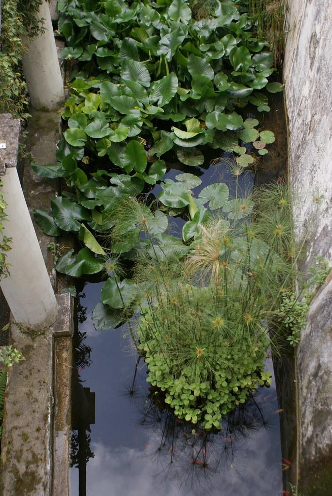 Jardin botanique de la Minerva à Salerne