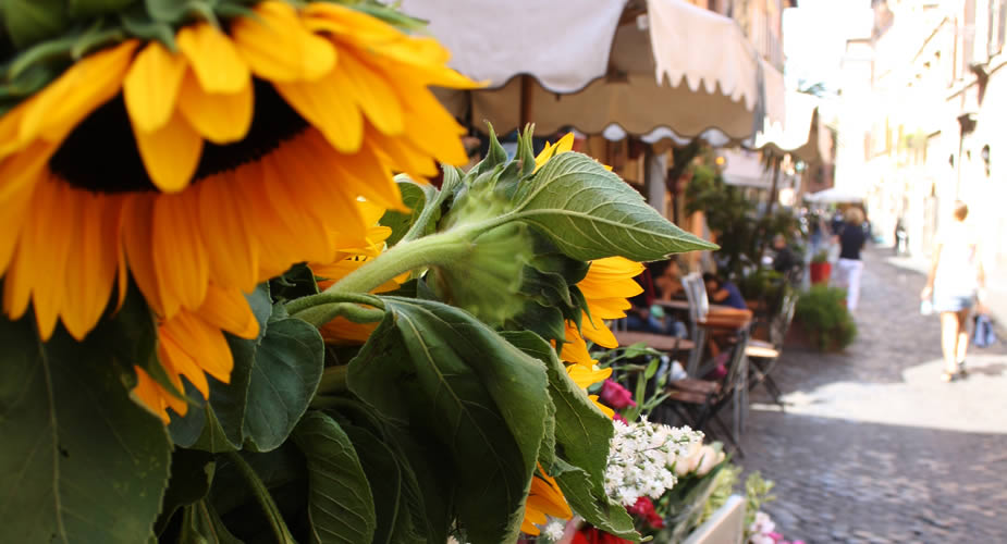Dorps en gezellig Rome: ontdek Trastevere | Mooistestedentrips.nl