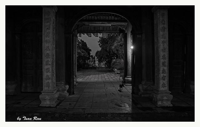 SHF_6488_Tao sach Pagoda