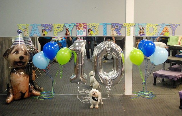 Rugby's 10th Birthday!