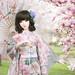 """""""Sakura"""" by infiniteserenity88"""