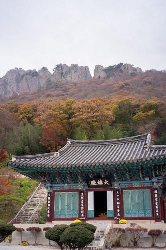 redmaple naejangsa naejangsan jeongeup jeollabukdo southkorea kr