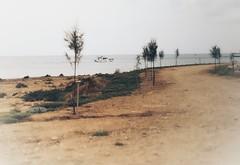 Crystal Springs Beach  (17)