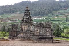 Arjuna Temple Dieng creature, Indonesia