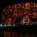 Beijing Bird Nest at night